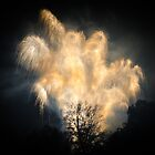 Big Firework Display by Bob Noble