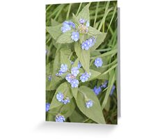 Blue flowers in May  Greeting Card