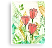 Three Popular Pink Tulips Canvas Print