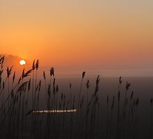 Morning sunrise on the North River by debraroffo