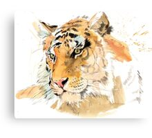 Tiger. The largest feline in the world. Canvas Print