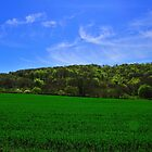 Spring Greens Dorset by delros