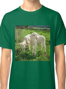 Spring Lambs Grazing On Farmland Classic T-Shirt
