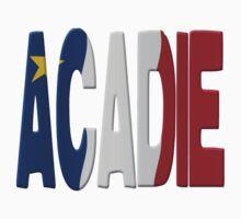 Acadian flag Baby Tee