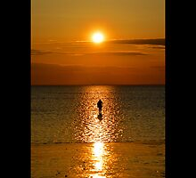 Man Standing Under The Evening Sun - Stony Brook, New York  by © Sophie W. Smith