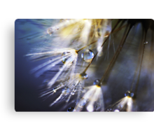 hold on tight... we are nearly there... Canvas Print
