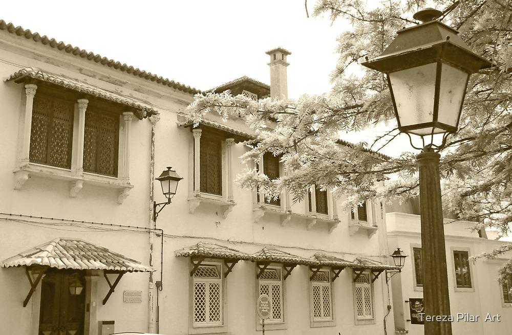 window columns by terezadelpilar~ art & architecture