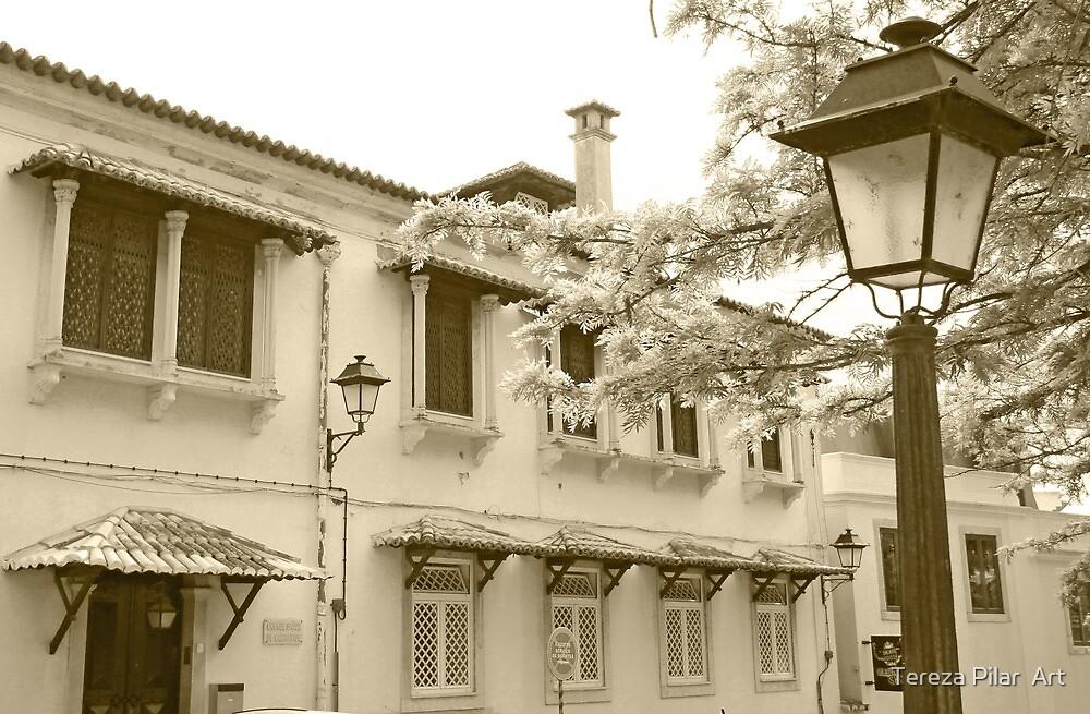 window columns by terezadelpilar ~ art & architecture