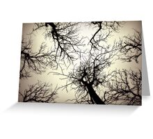 Smiled in silence Greeting Card
