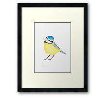 Watercolor Bird Framed Print