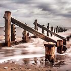 Spurn Point Beach by Theresa Elvin
