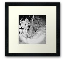 This is Snow More Fun Framed Print