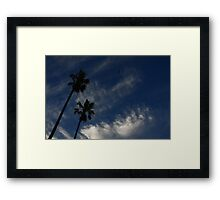Dance of the Swallows Framed Print