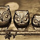 Owls in the Night by HanieBCreations