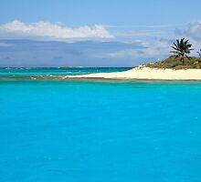 Turquoise Caribbean by Roupen  Baker