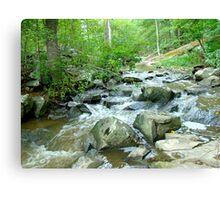 Autumn Comes Calling At The Unami Creek - Green Lane PA Canvas Print
