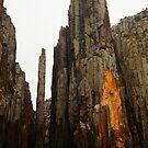 the lanterns. tasman peninsula, tasmania  by tim buckley | bodhiimages
