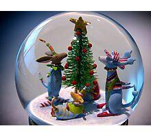 Christmas 2012 Photographic Print