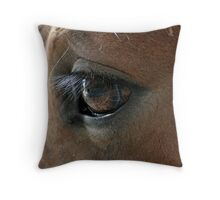 Shire Foals eye, Throw Pillow