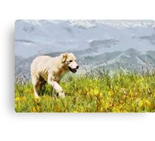 Dog walking by grass painting Canvas Print