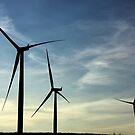 Wind Farm - Western WA. by ZWC Photography
