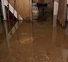 Flooded Basement Tampa by addieturner62