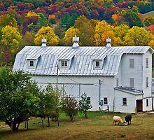 Dutch Barn in West Virginia by vivsworld
