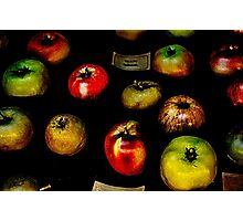Apples apples apples Photographic Print