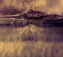 Infrared Photography - Log in the Weir by printsbypixie