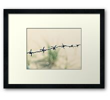 Walking through barbed wire Framed Print
