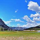 Yellowstone National Park by RedskinzFan