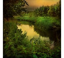 """Evening Brook"" Photographic Print"