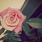 Rose Tear by Kirsten Day