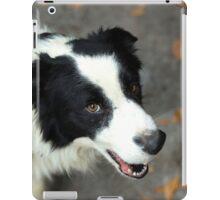 unexpected companion iPad Case/Skin