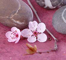 Stones Flower 2 by kvvpst
