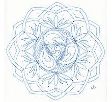 Waking Mandala Photographic Print