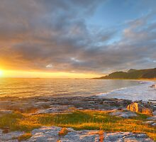 Sunset on the coast of Andoya in Norway by DmiSmiPhoto