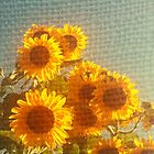 Sunny Sunflowers by Bogies