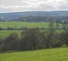 Sheffield Countryside by NoveltyBobble