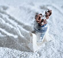 R2 by Deanomite85