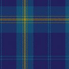 02319 Danzas Tartan Fabric Print Iphone Case by Detnecs2013