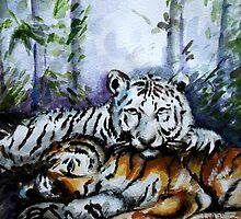Tigers! Mother and Child by Harsh  Malik
