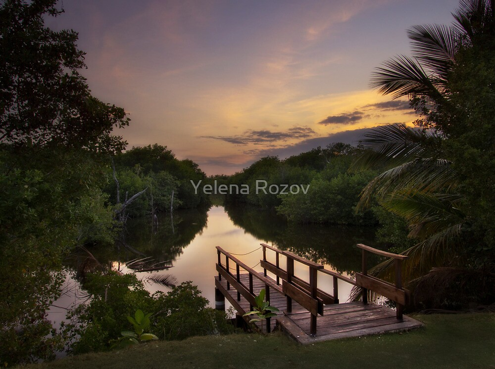 Peaceful Evening  by Yelena Rozov