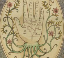 The Art of Palmistry Sticker
