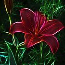 Luminous Lily by Joann Copeland-Paul