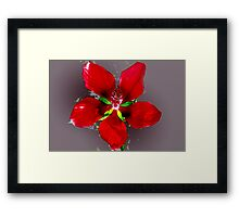 Swamp hibiscus Framed Print