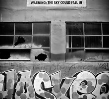 Warning: The Sky Might Fall In. by Nicholas Griffin