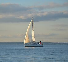 Sunlit Sails by Malcolm Snook