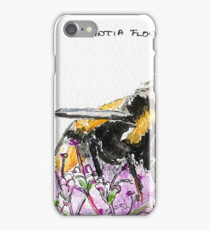 Bumble Bee browsing on astrantia flower iPhone Case/Skin