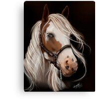 Soul Seeker Horse Art  Canvas Print